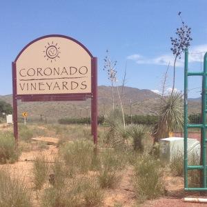 Coronado Vineyards (21)